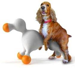 13 Cara Mengatasi Anjing Jantan Birahi