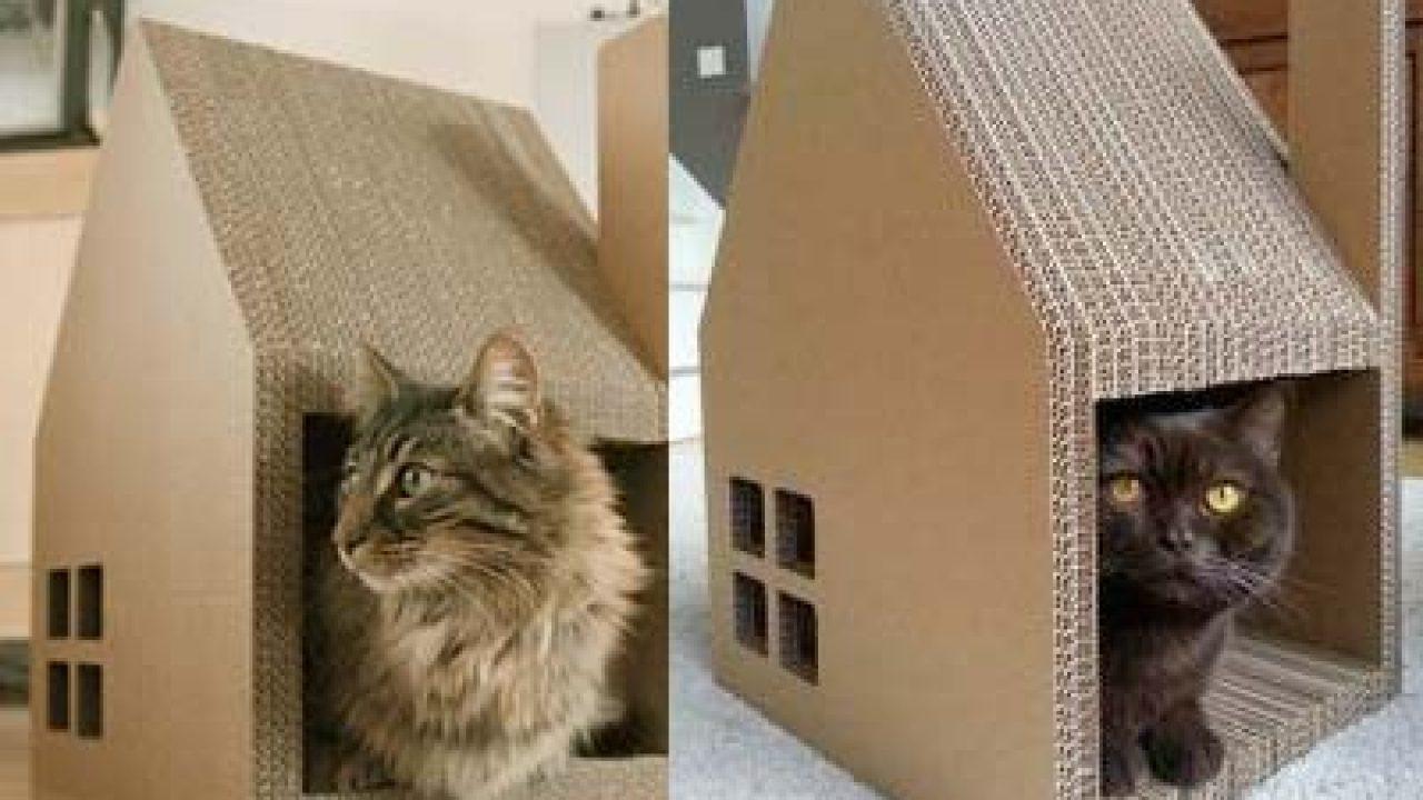 Cara Membuat Rumah Kucing Dari Kardus Yang Gampang ...