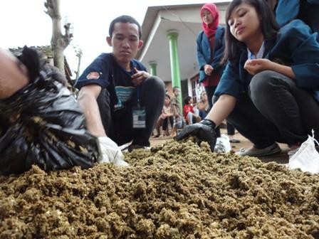 6 Cara Membuat Pakan Organik dari Kotoran Sapi