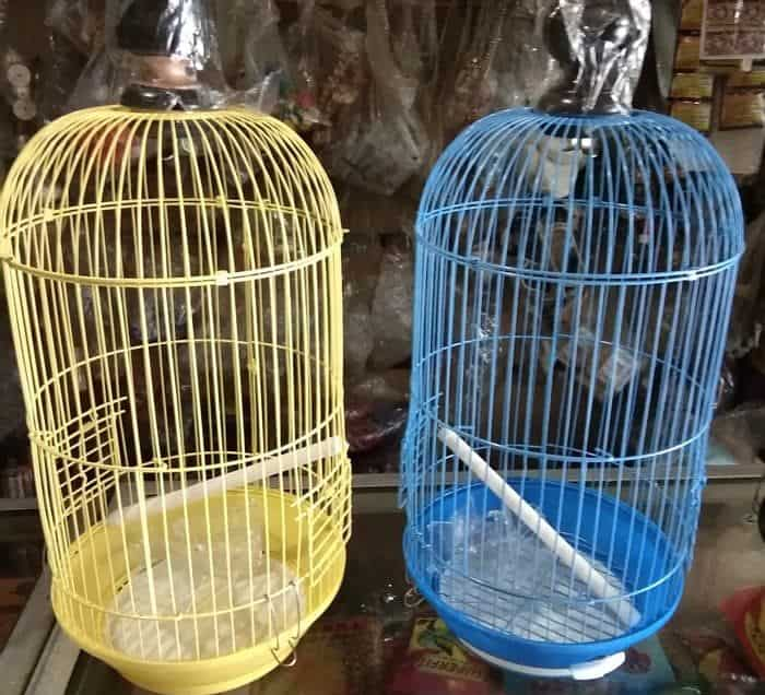 10 Kelebihan Sangkar Besi untuk Burung Peliharaan