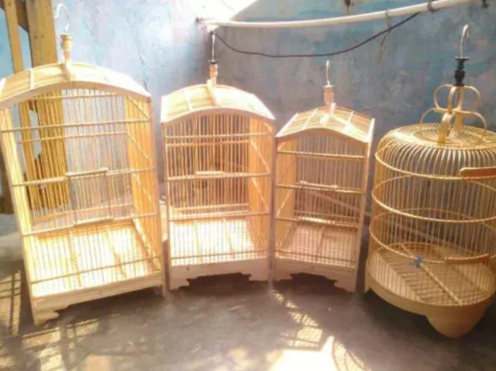 8 Kelebihan Sangkar Kayu untuk Burung Peliharaan