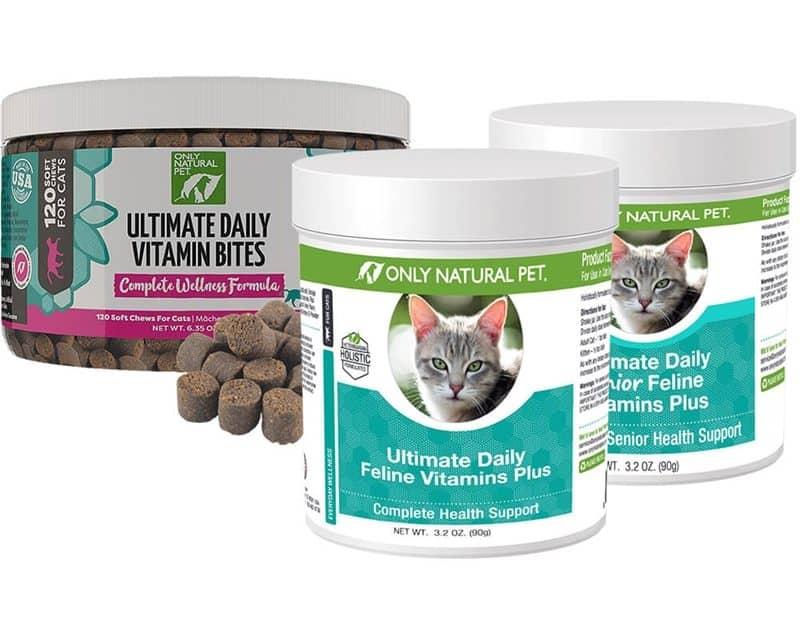 6 Merek Vitamin Penambah Nafsu Makan Kucing