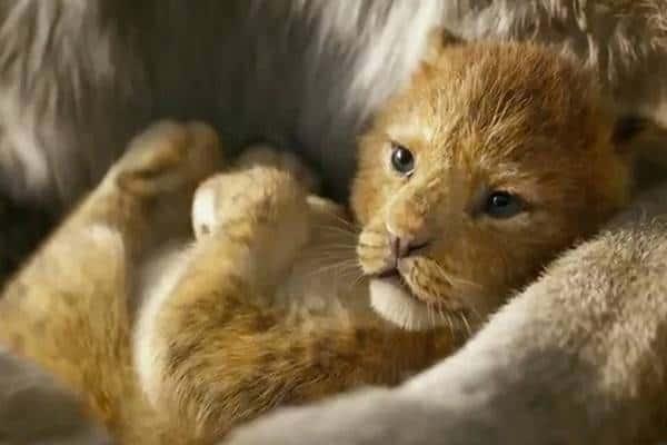 7 Daftar Hewan yang Ada di Film The Lion King