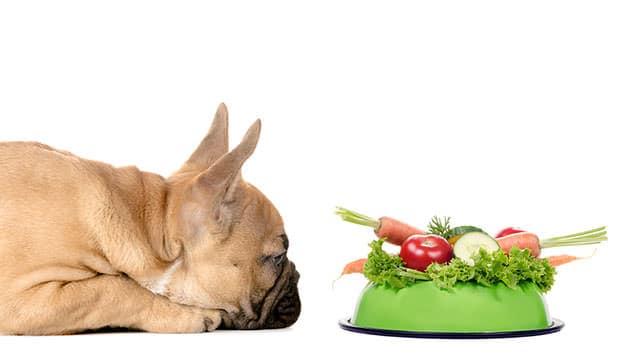 7 Jenis Sayuran yang Tidak Boleh untuk Anjing